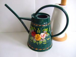 Small indoor watering can